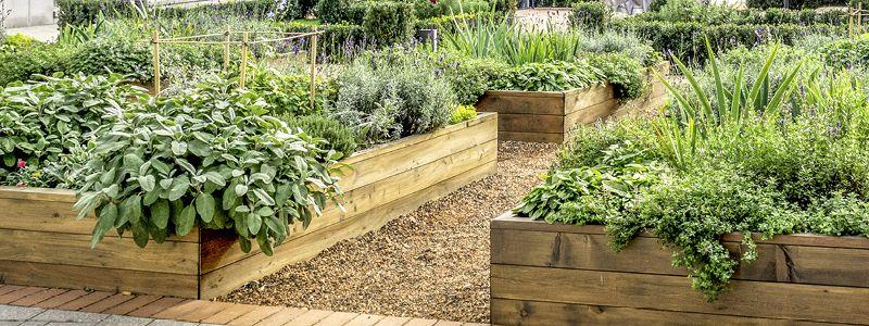 raised planters full of plants, bark walkway